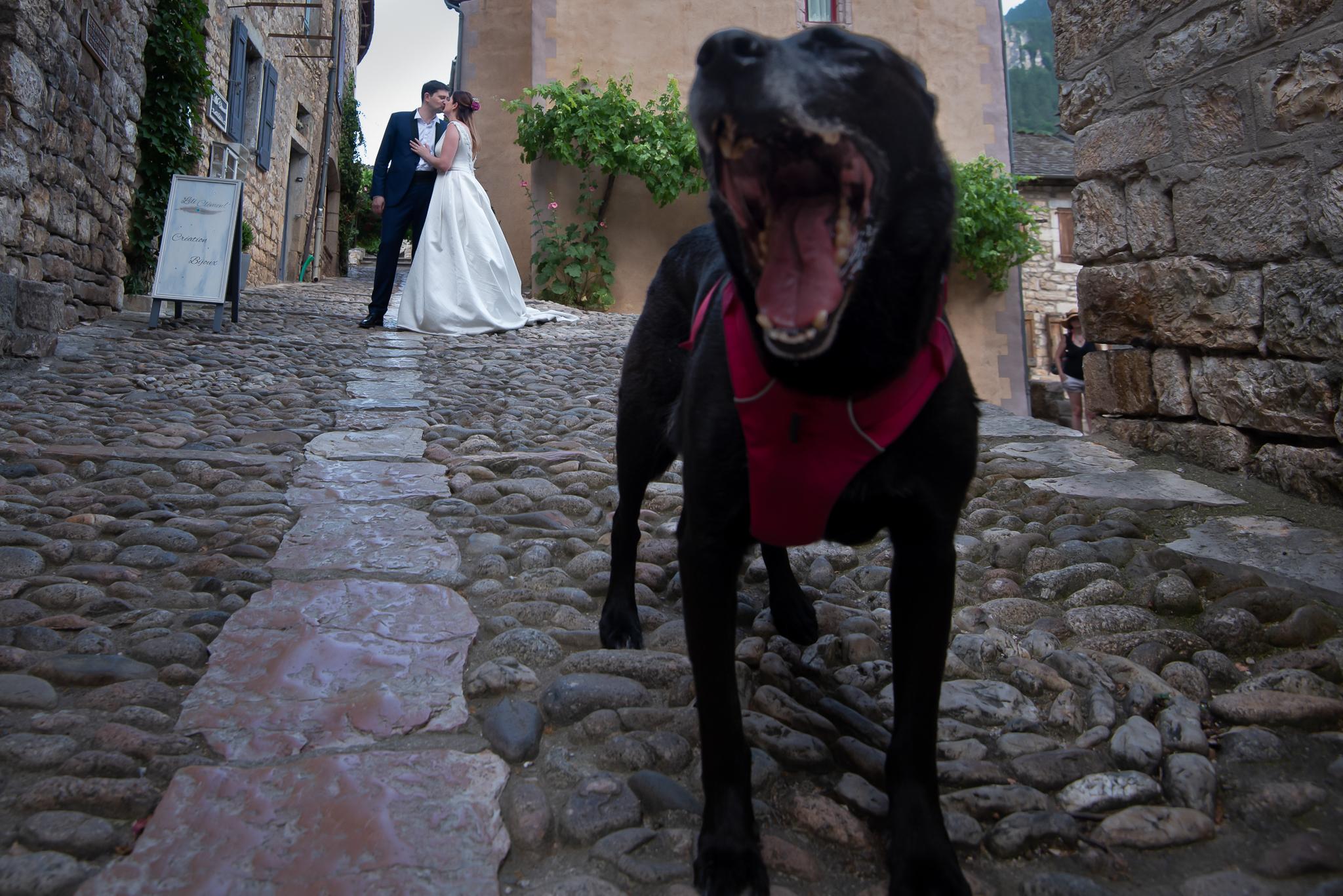 fotograf nunta franta (49)
