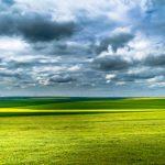 batch_MarianNichitov - Culori